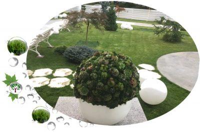 SERVICII | Proiectare, Amenajare, Plantare, Irigatii si Intretinere spatii verzi